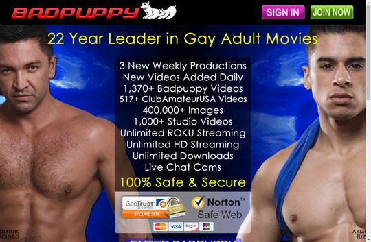 badpuppy.com - Badpuppy