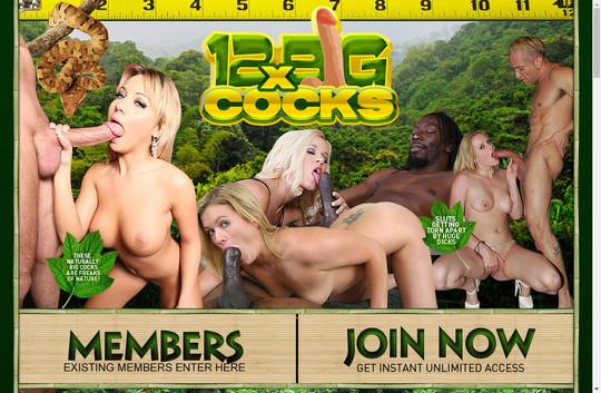 12xBigCocks.com - 12x Big Cocks