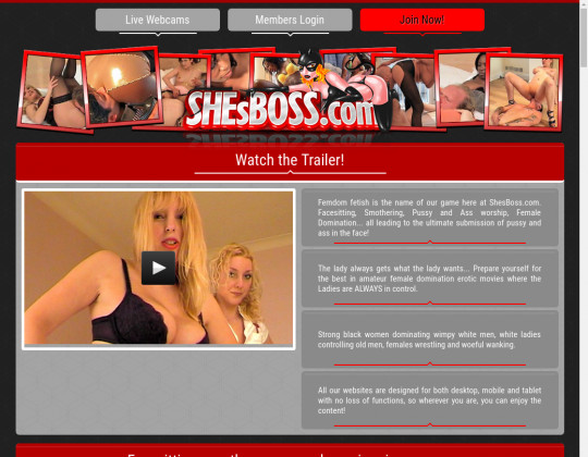 Shesboss.com premium access