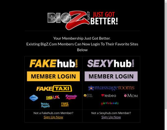 bigz.com - big z com