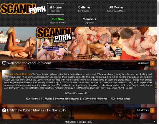 scandiporn.com - scandi porn