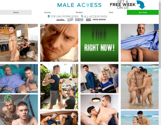 maleaccess.com - male access