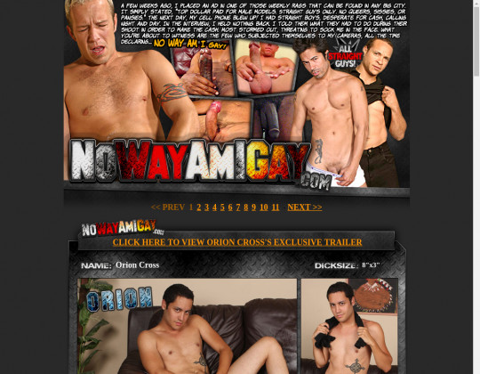 nowayamigay.com - no way am i gay